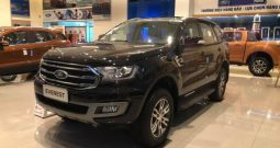 FORD EVEREST 2.0L AT BẢN TREND 4X2